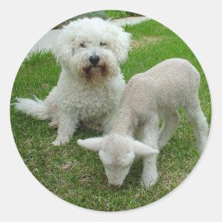 The Bichon Lamb-Minder Gift Range Classic Round Sticker