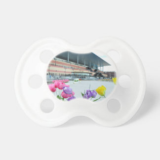 The Big A Baby Pacifiers