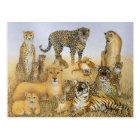 The Big Cats Postcard