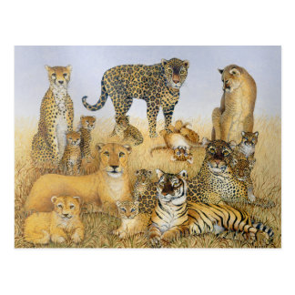 The Big Cats Postcard
