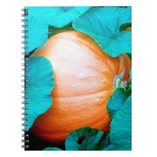 The big pumpkin notebook