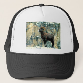 The Bighorn Ram Trucker Hat