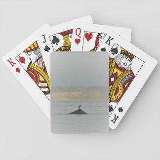 The Bird Standard Cards