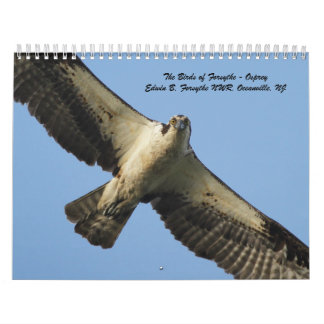 The Birds of Forsythe - Osprey Calendar