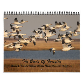 The Birds of Forsythe Wall Calendars
