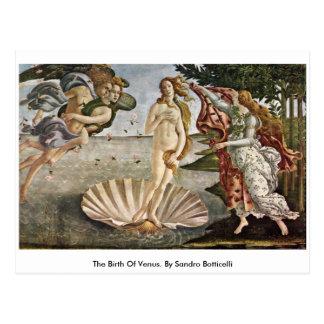 The Birth Of Venus. By Sandro Botticelli Postcard