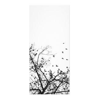 the black birds rack card design