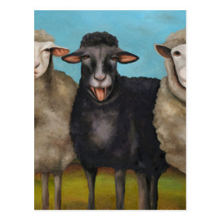 The Black Sheep Postcard