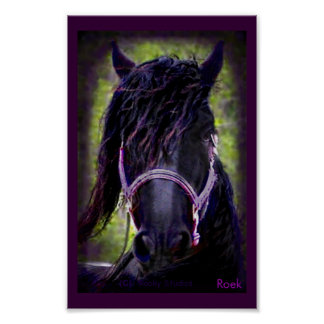 The Black Stallion Print