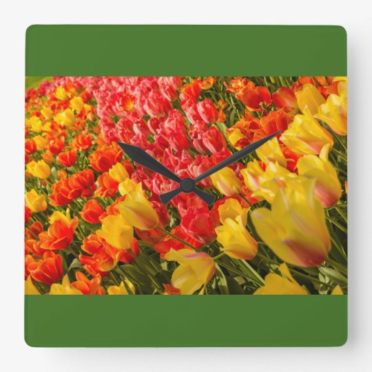 THE BLOSSOMING OF TULIPS  IN A PARK   WALL CLOCK