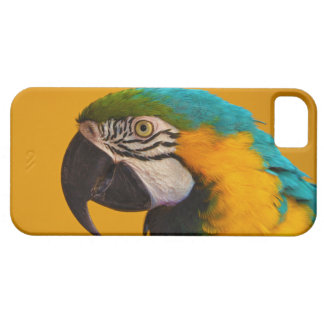 The Blue and Yellow Macaw Ara Ararauna Parrot Bird Case For The iPhone 5