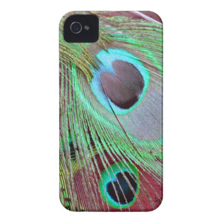 The Blue Eye peacock flowing feather. iPhone 4 Case-Mate Cases