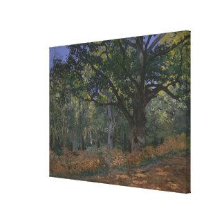 The Bodmer Oak, Fontainebleau Forest Canvas Print