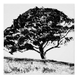 The Bonaventure Pine Perfect Poster