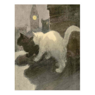 The Book of the Cat: A Night On Postcard