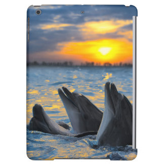 The bottle-nosed dolphins in sunset light iPad air case