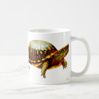 The Box Turtle Mug