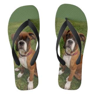 THE BOXER DOG flip flops