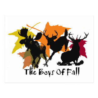 The Boys Of Fall Postcard
