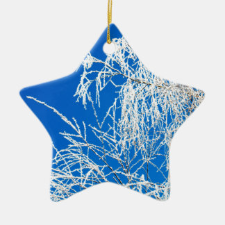 The branches of the tree during the winter ceramic star ornament
