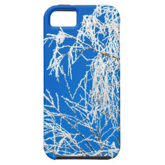 The branches of the tree during the winter iPhone 5 case