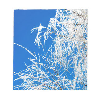 The branches of the tree during the winter notepad