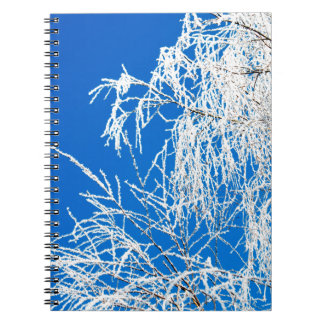 The branches of the tree during the winter spiral notebook