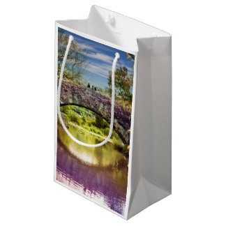 The bridge small gift bag