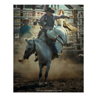 The Bronc Rider Poster