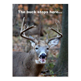 The buck stops here postcard