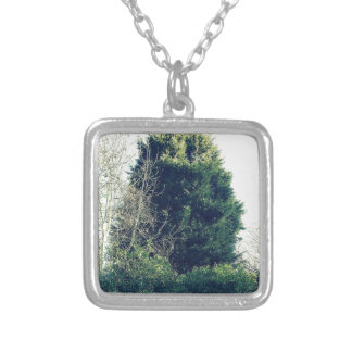 The bush silver plated necklace