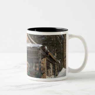 The cabins at the AMC's Little Lyford Pond Two-Tone Coffee Mug