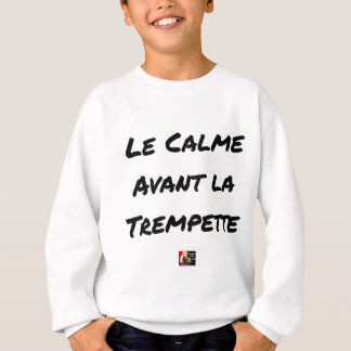 The CALM one BEFORE the QUICK DIP - Word games Sweatshirt