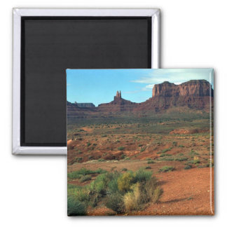 The Camel, Monument Valley Magnet