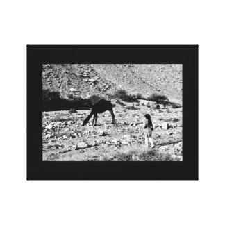 The Camel Whisperer Canvas Print