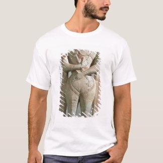 The Capitrano Warrior T-Shirt