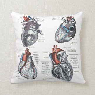 the Cardiologist's Pillow