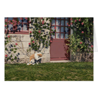 The Cat At Rose Cottage Card