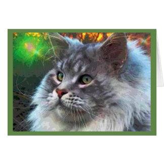 The Cat Card