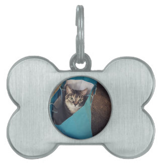 The cat is ready to come out of the bag pet tags