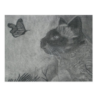 The Cat & The Butterfly Postcard