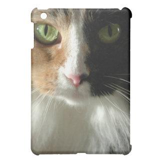 The Cat's Eyes iPad Mini Case