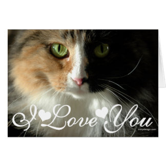 The Cat's Eyes Photo Image I Love You Card