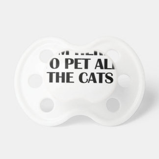 the cats pacifier