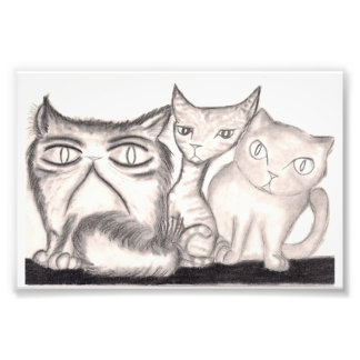 The Cats Photo Print