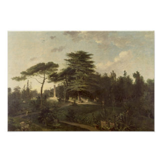 The Cedar of Lebanon in the Jardin des Plantes Poster