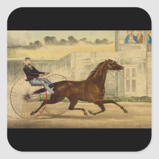 The Celebrated Trotting Mare Lucy_Engravings Square Sticker