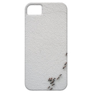 The chain of ants close-up iPhone 5 case