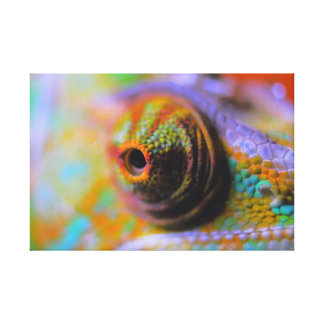 The Chameleon Canvas Print