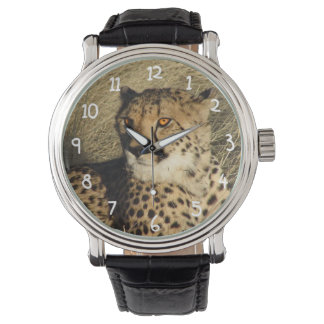 The Cheetah Watch
